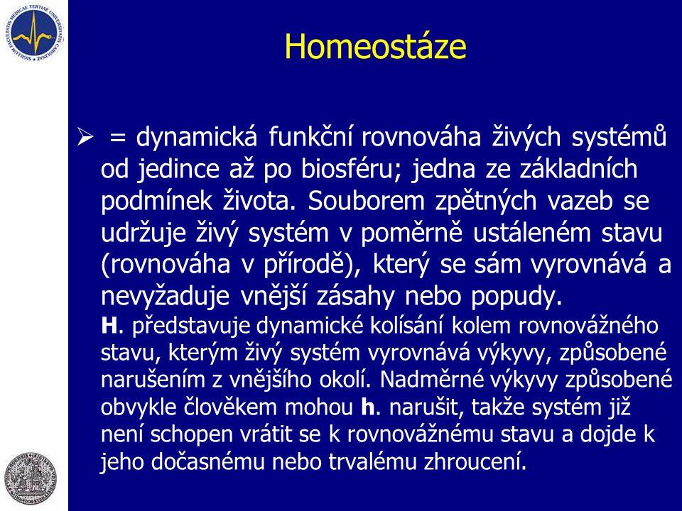 Homeostáze