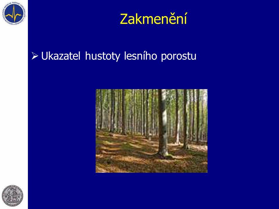 Zakmenění Ukazatel hustoty lesního porostu