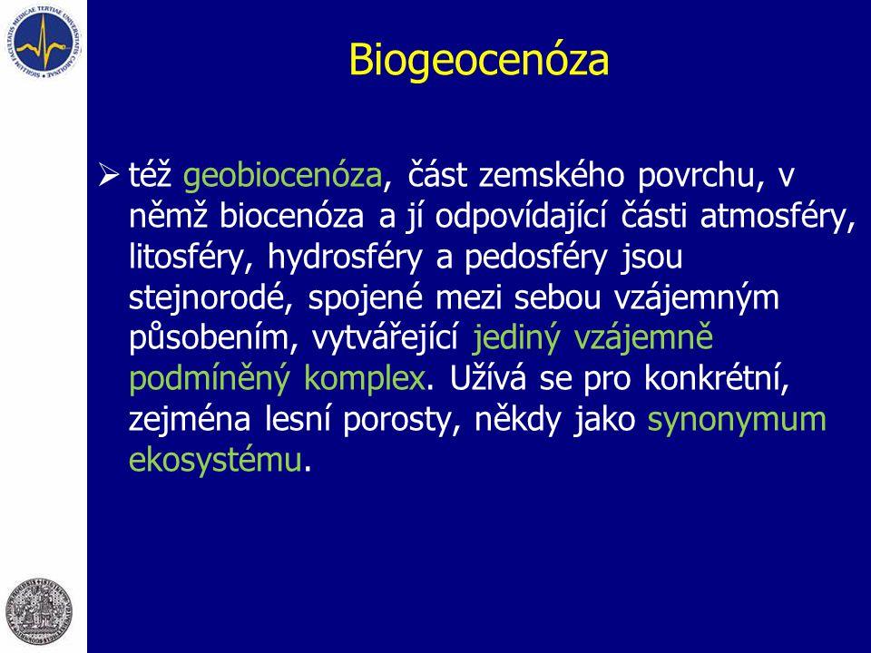 Biogeocenóza