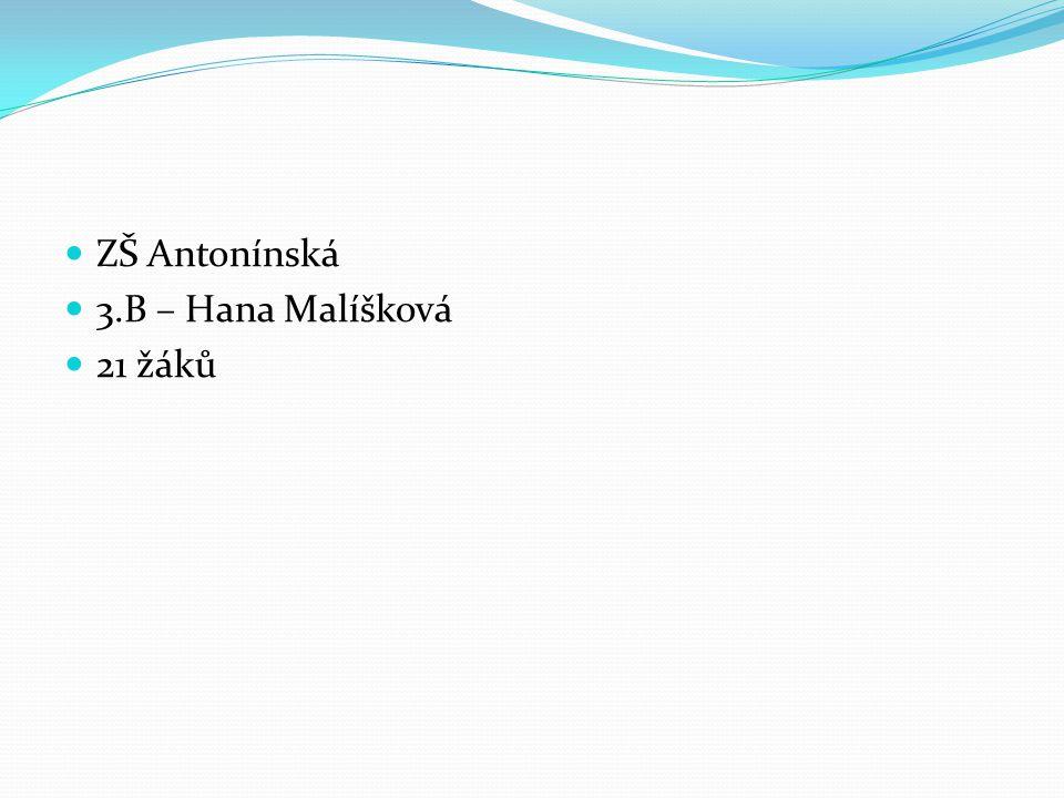 ZŠ Antonínská 3.B – Hana Malíšková 21 žáků
