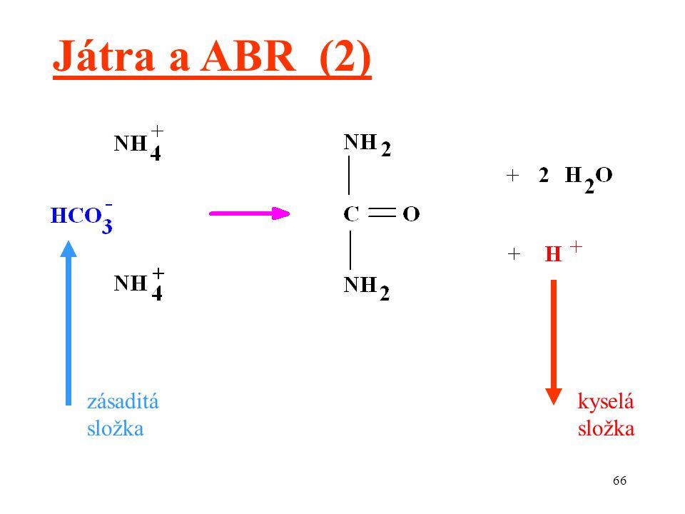 Játra a ABR (2) zásaditá složka kyselá složka