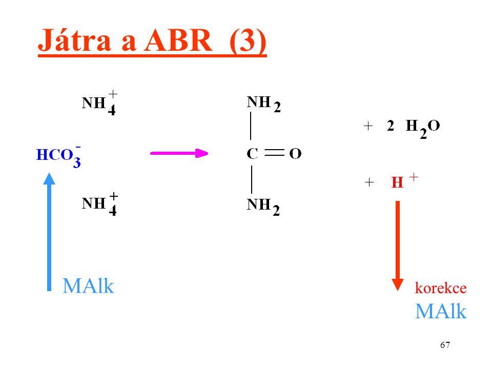 Játra a ABR (3) MAlk korekce MAlk