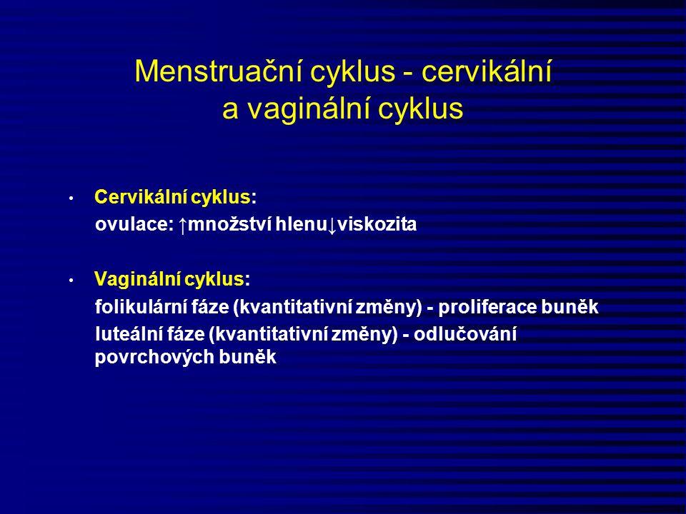 Menstruační cyklus - cervikální a vaginální cyklus
