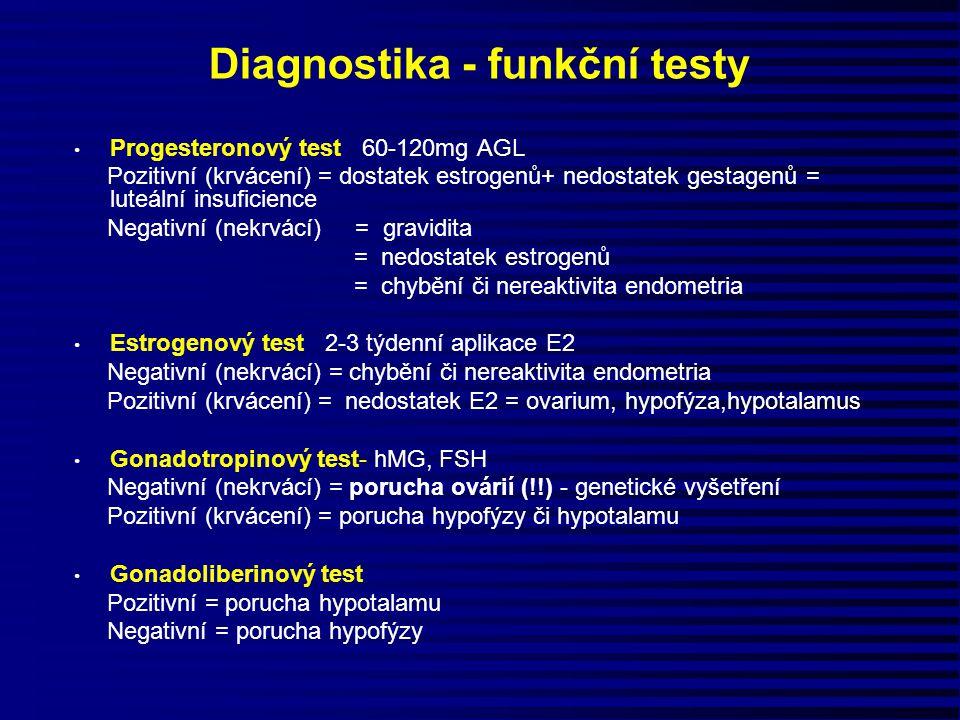 Diagnostika - funkční testy