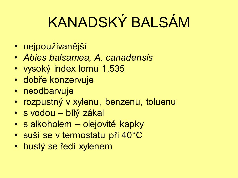 KANADSKÝ BALSÁM nejpoužívanější Abies balsamea, A. canadensis
