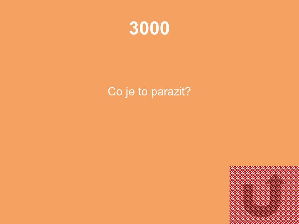 3000 Co je to parazit