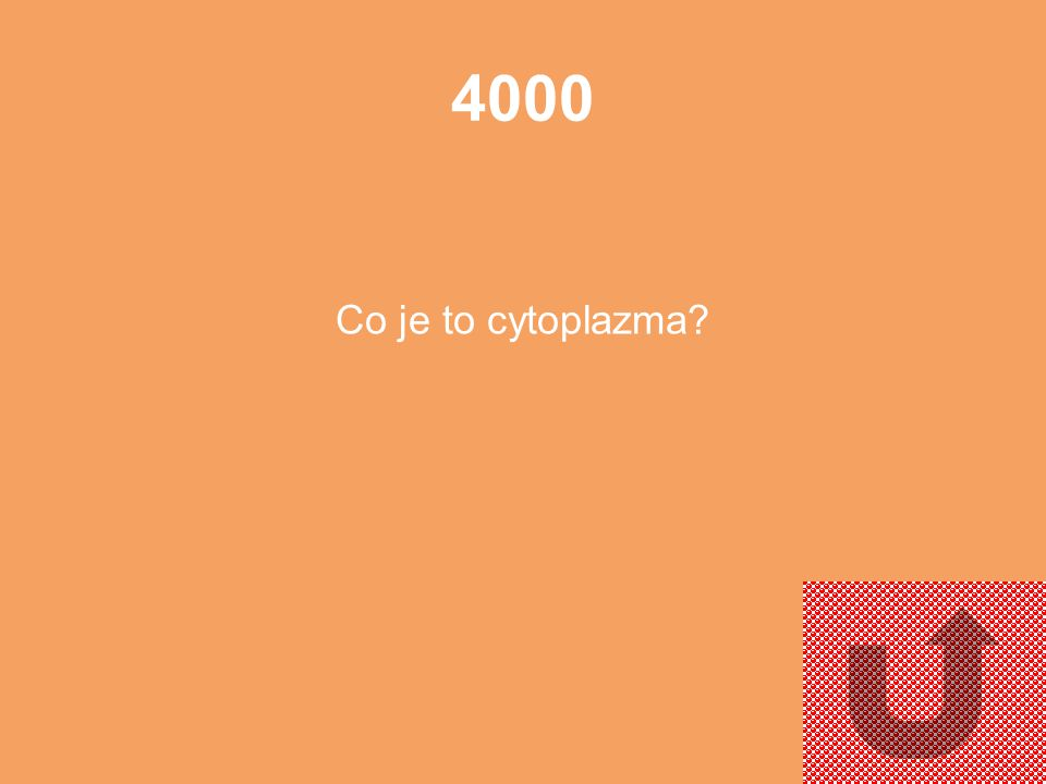 4000 Co je to cytoplazma
