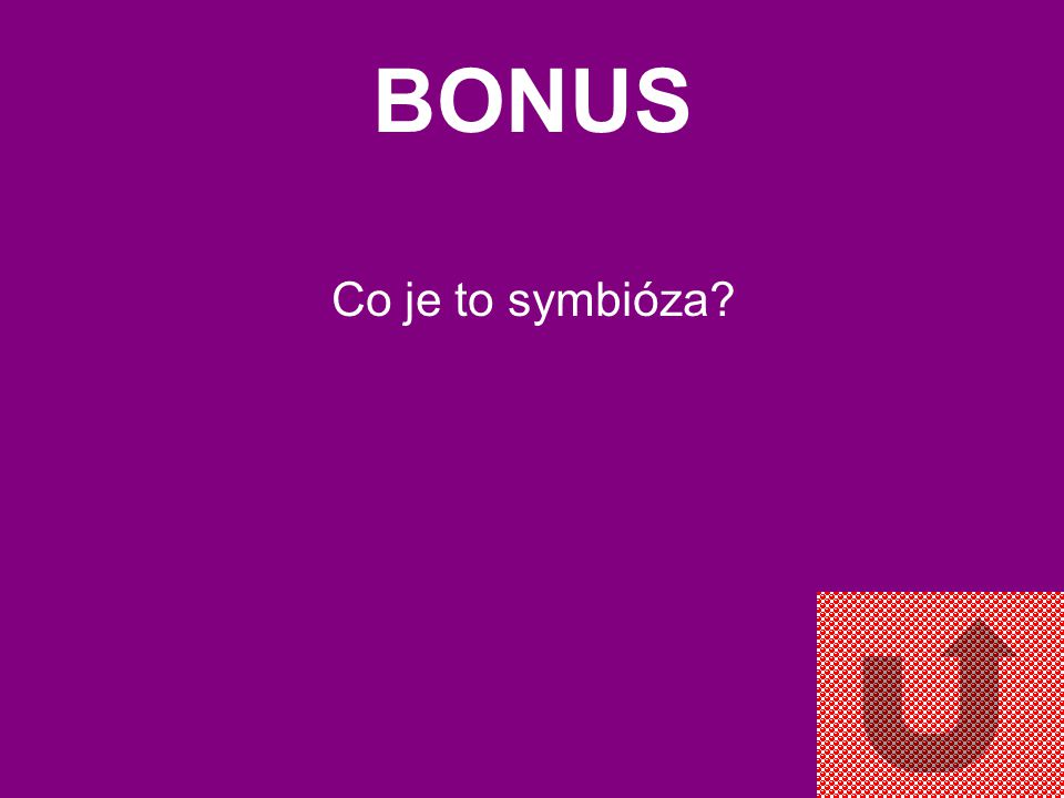 BONUS Co je to symbióza
