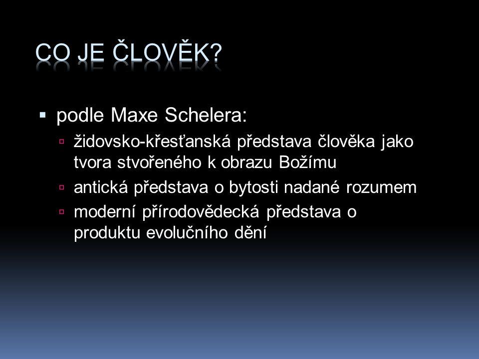 Co je člověk podle Maxe Schelera: