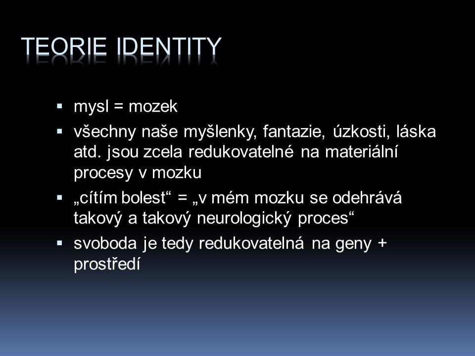 Teorie identity mysl = mozek