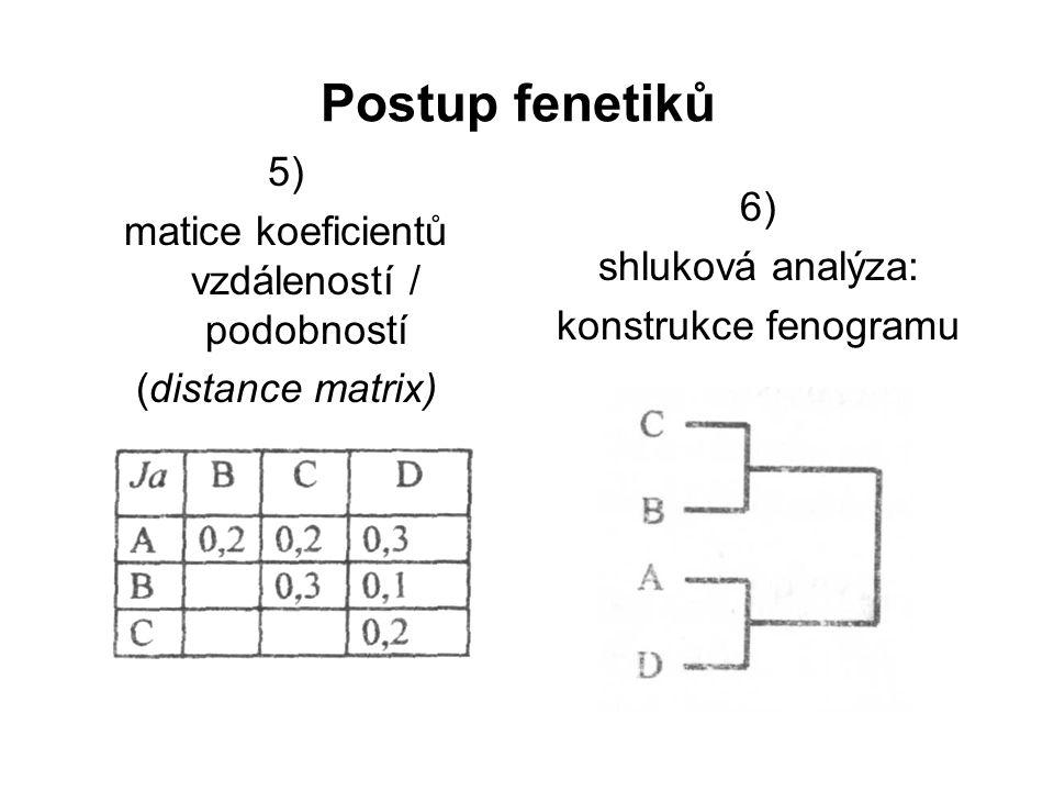 matice koeficientů vzdáleností / podobností