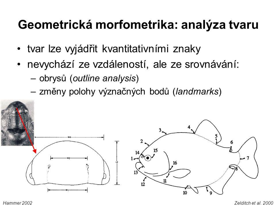 Geometrická morfometrika: analýza tvaru