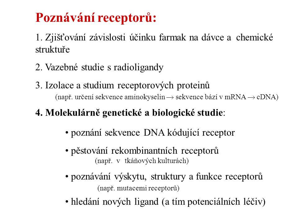Poznávání receptorů: 1. Zjišťování závislosti účinku farmak na dávce a chemické struktuře. 2. Vazebné studie s radioligandy.
