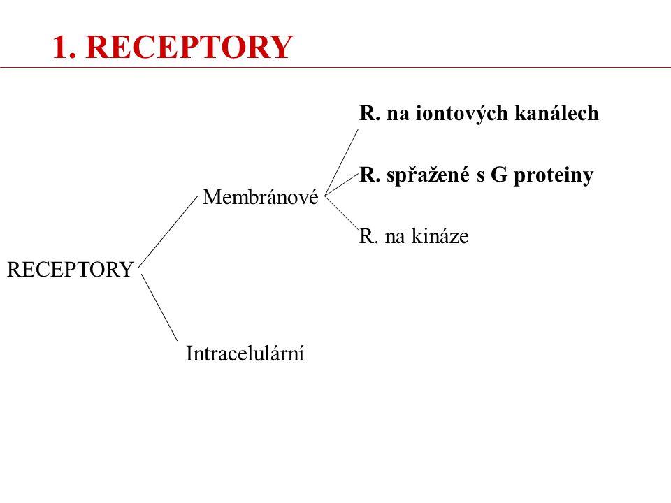 1. RECEPTORY R. na iontových kanálech R. spřažené s G proteiny