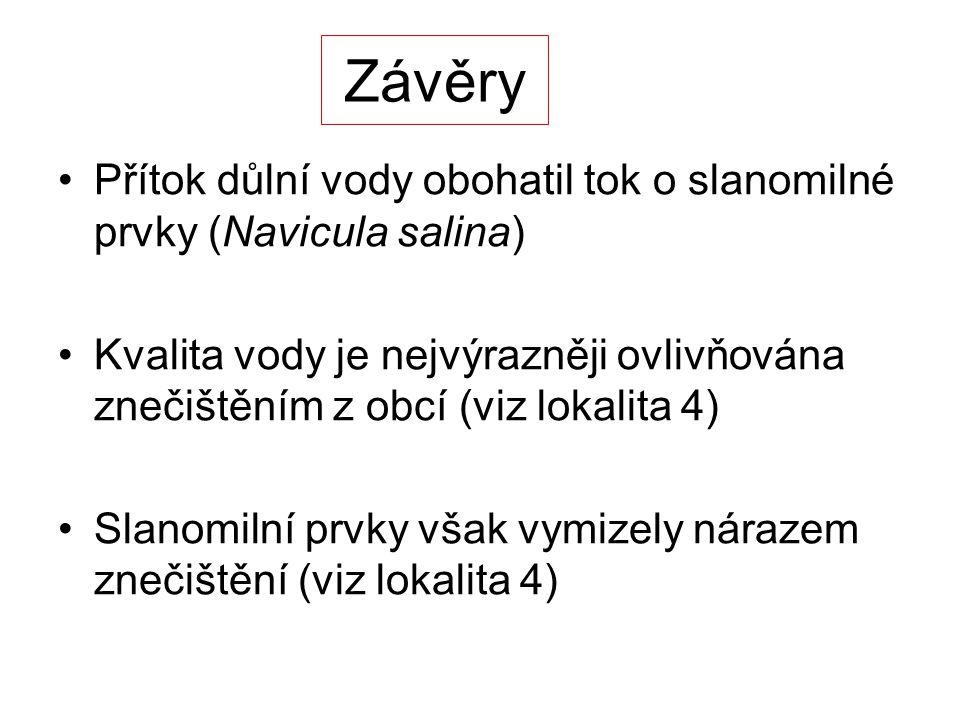 Závěry Přítok důlní vody obohatil tok o slanomilné prvky (Navicula salina)