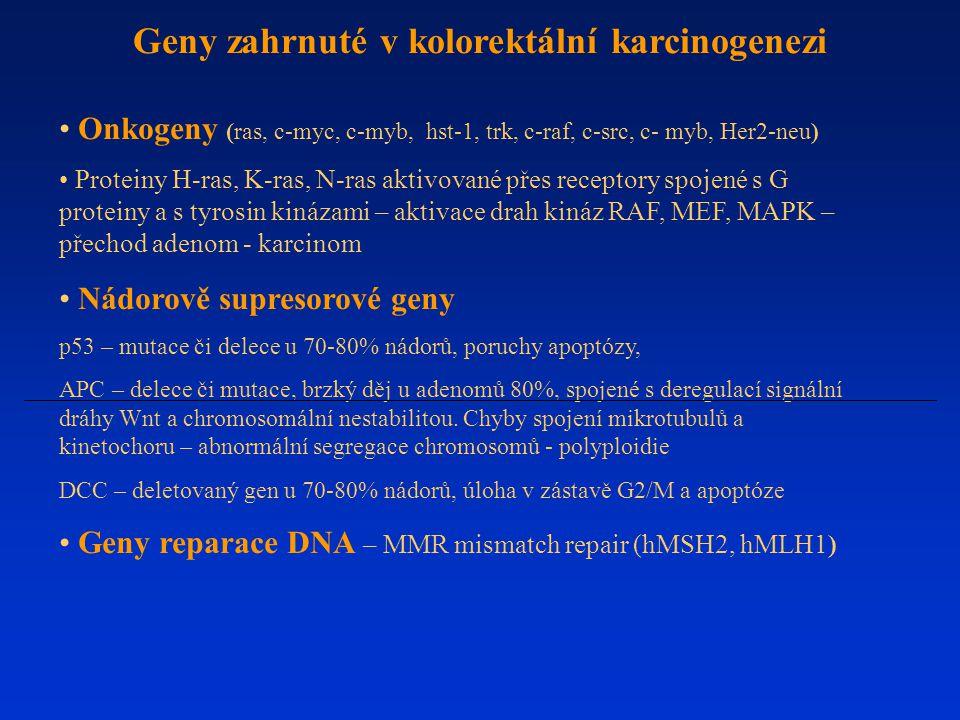 Geny zahrnuté v kolorektální karcinogenezi
