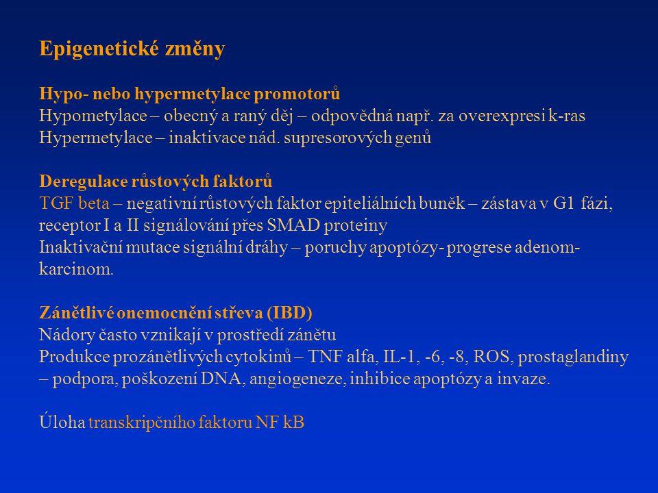 Epigenetické změny Hypo- nebo hypermetylace promotorů