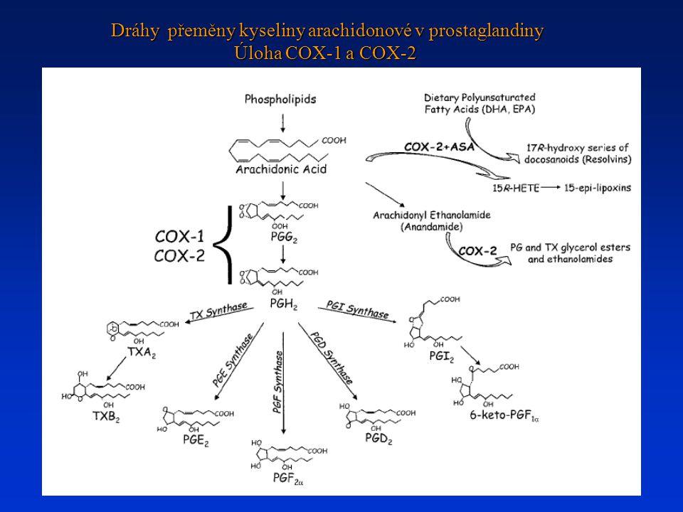 Dráhy přeměny kyseliny arachidonové v prostaglandiny