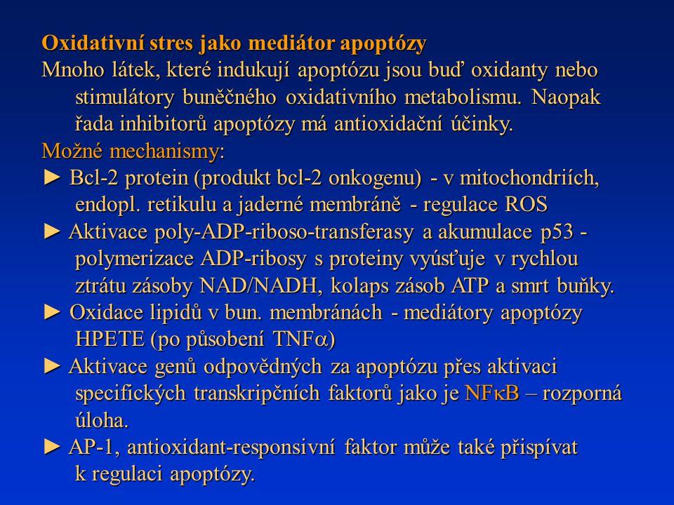 Oxidativní stres jako mediátor apoptózy