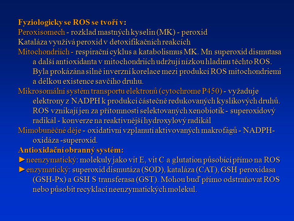 Fyziologicky se ROS se tvoří v: