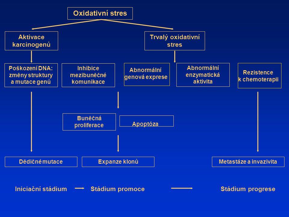 Oxidativní stres Aktivace karcinogenů Trvalý oxidativní stres