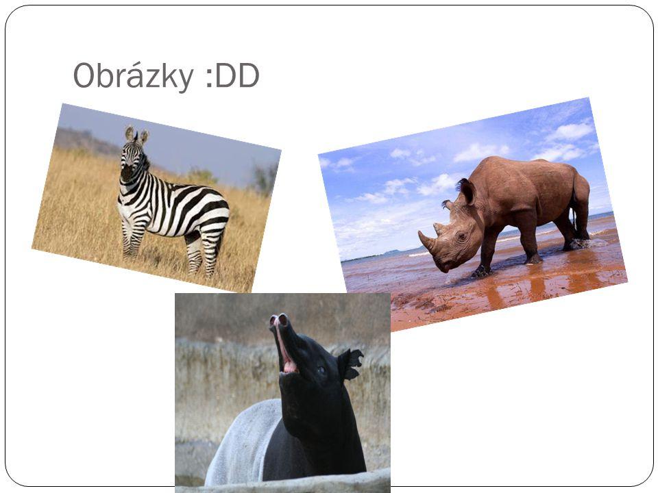 Obrázky :DD