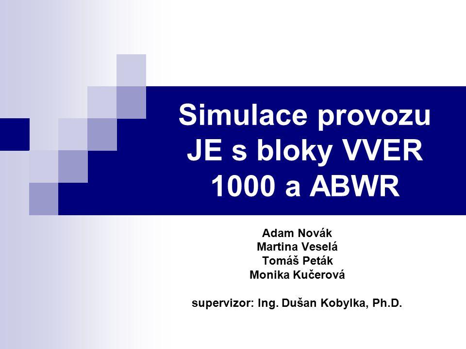 Simulace provozu JE s bloky VVER 1000 a ABWR