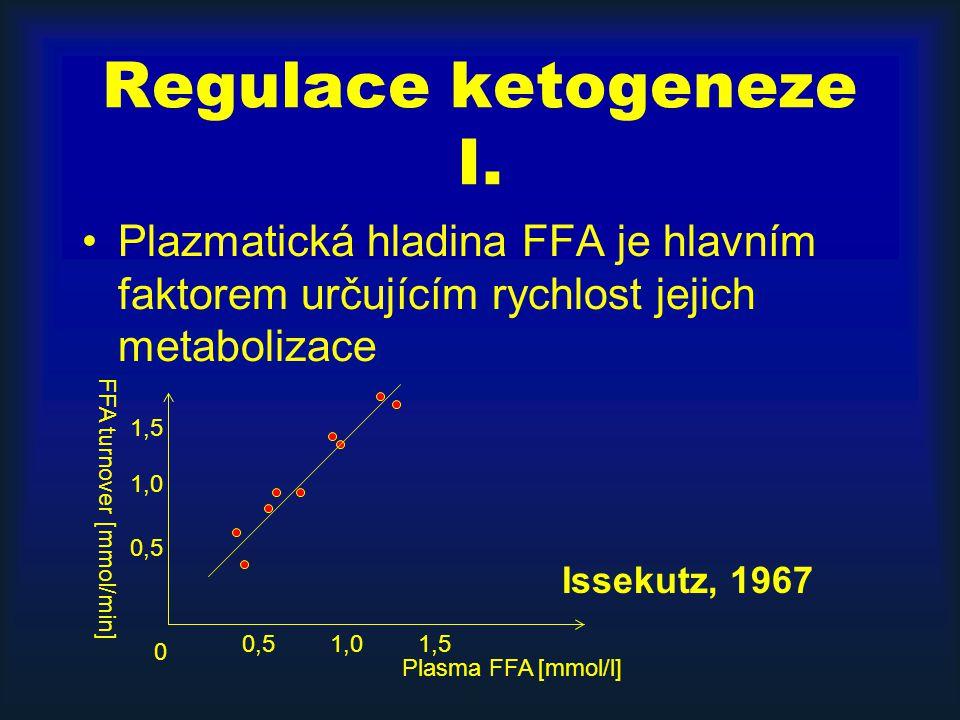 Regulace ketogeneze I. Plazmatická hladina FFA je hlavním faktorem určujícím rychlost jejich metabolizace.