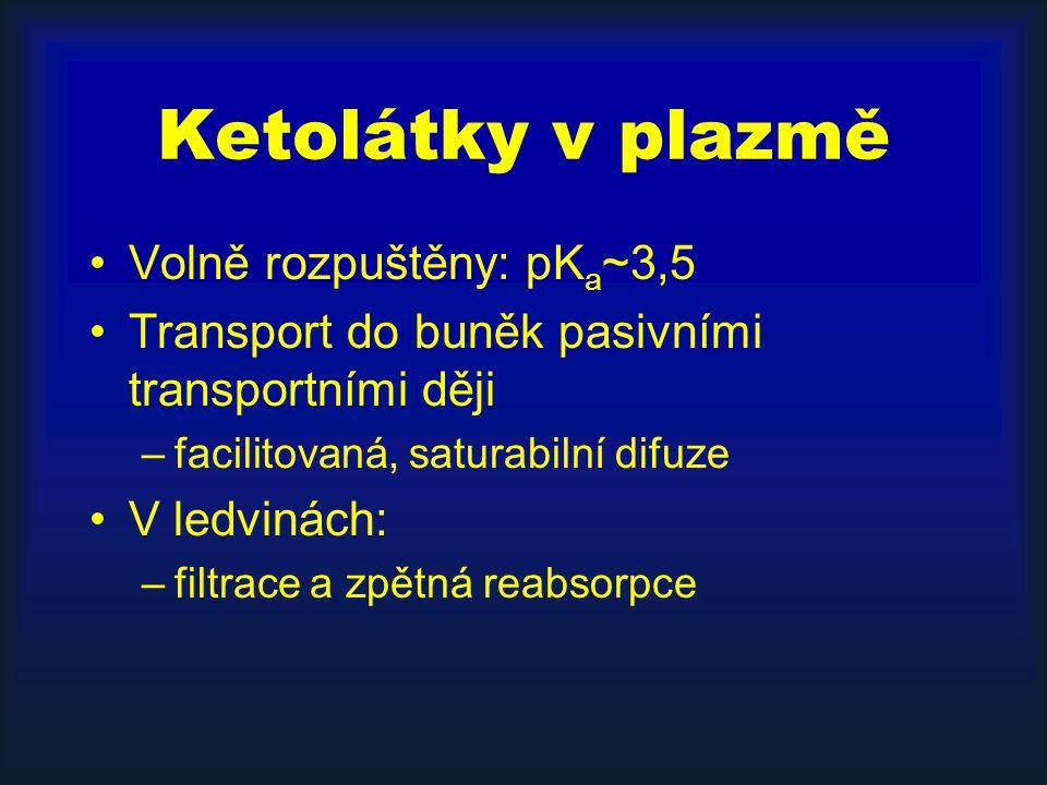 Ketolátky v plazmě Volně rozpuštěny: pKa~3,5