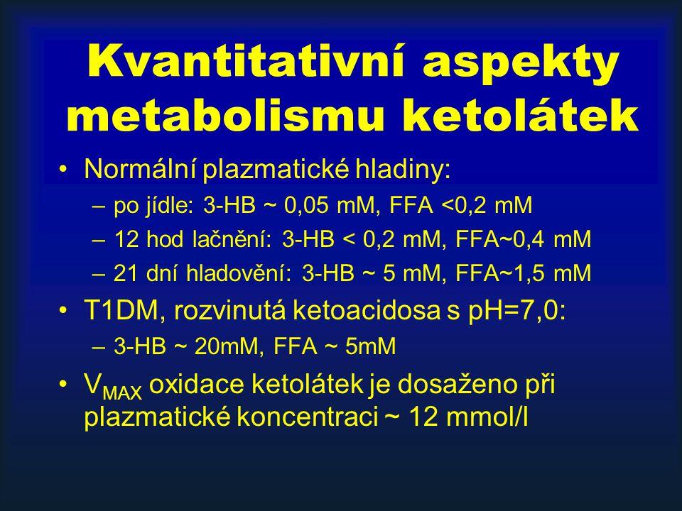 Kvantitativní aspekty metabolismu ketolátek