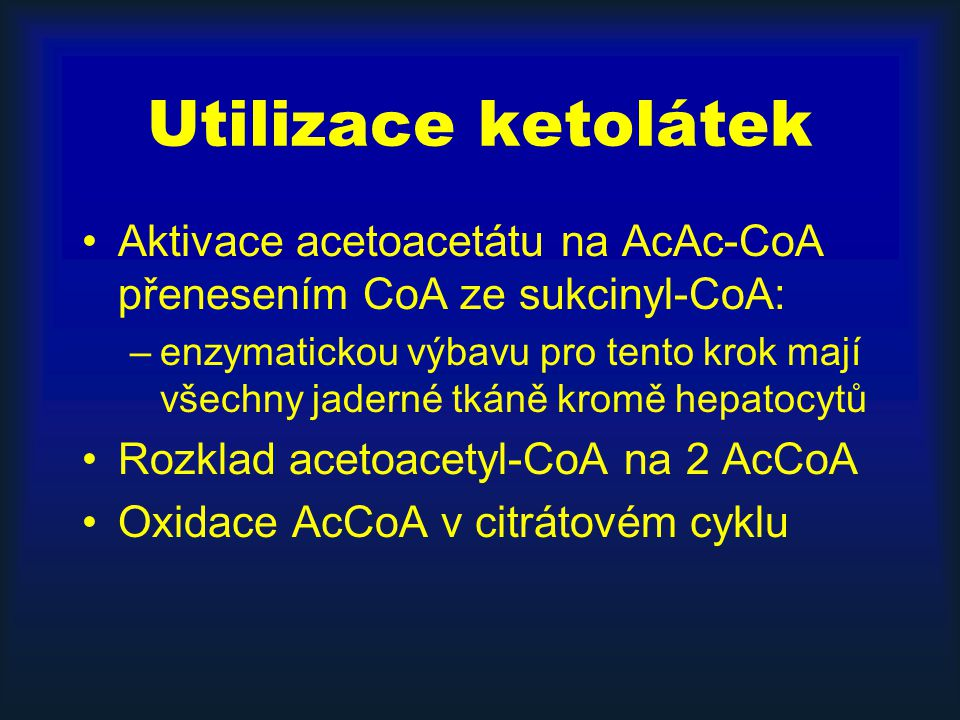 Utilizace ketolátek Aktivace acetoacetátu na AcAc-CoA přenesením CoA ze sukcinyl-CoA: