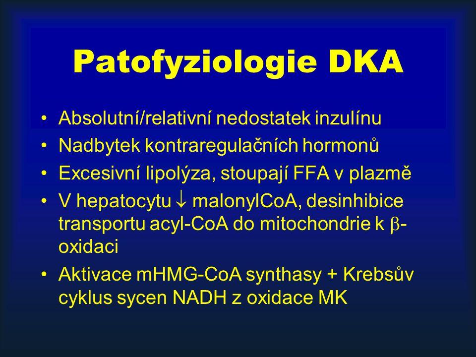 Patofyziologie DKA Absolutní/relativní nedostatek inzulínu