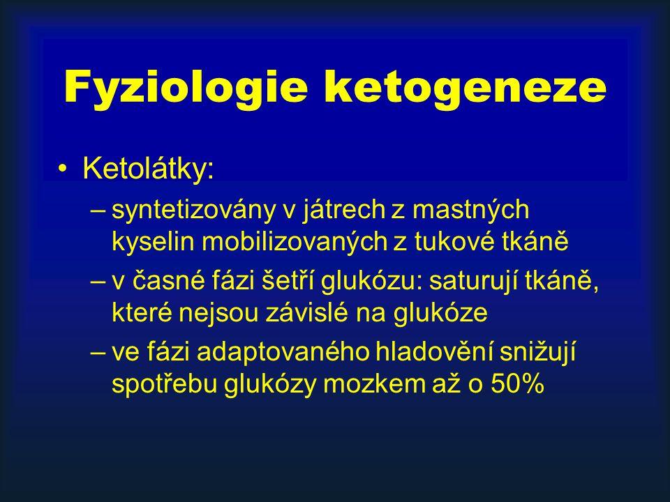 Fyziologie ketogeneze