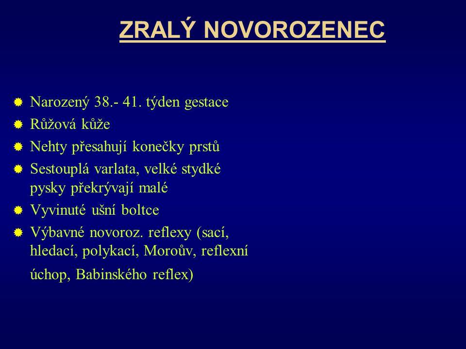 ZRALÝ NOVOROZENEC Narozený 38.- 41. týden gestace Růžová kůže