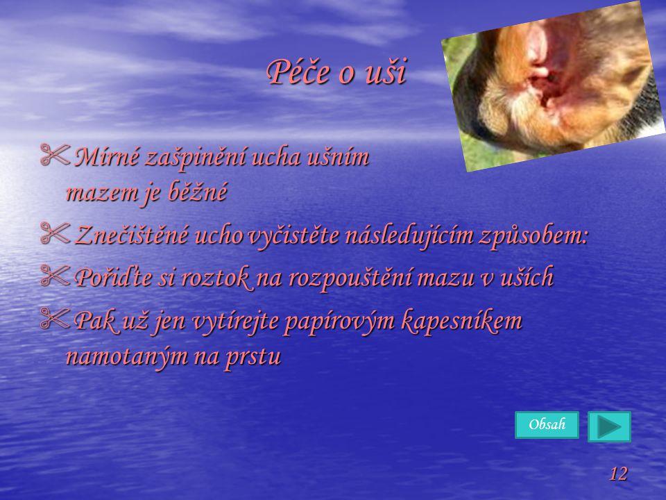 Péče o uši Mírné zašpinění ucha ušním mazem je běžné