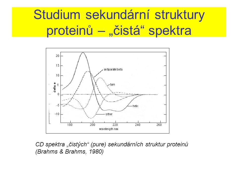 """Studium sekundární struktury proteinů – """"čistá spektra"""