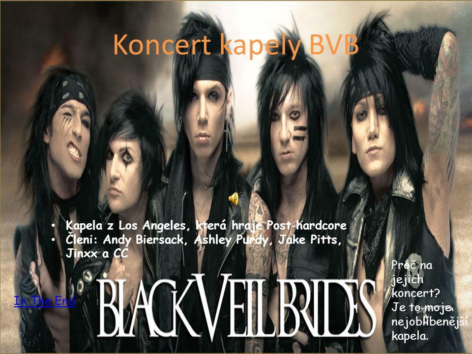 Koncert kapely BVB Kapela z Los Angeles, která hraje Post-hardcore