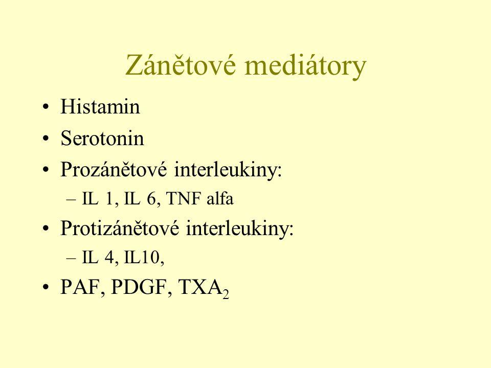 Zánětové mediátory Histamin Serotonin Prozánětové interleukiny: