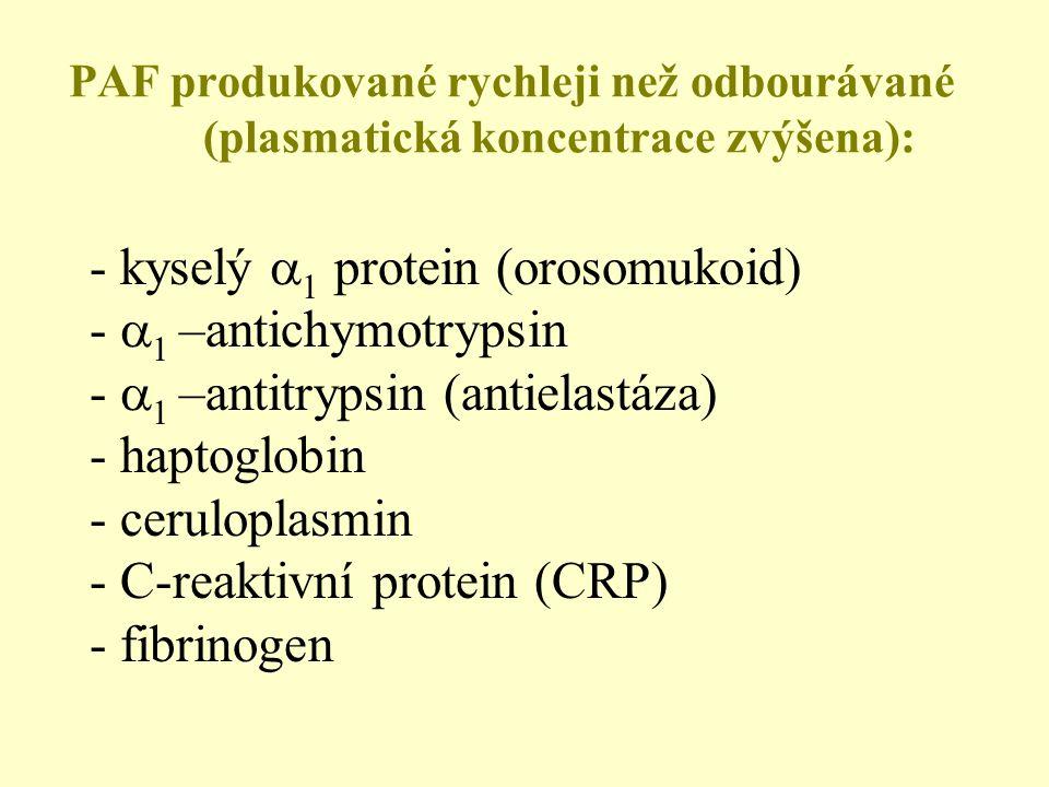 - kyselý 1 protein (orosomukoid) - 1 –antichymotrypsin