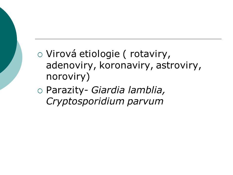 Virová etiologie ( rotaviry, adenoviry, koronaviry, astroviry, noroviry)