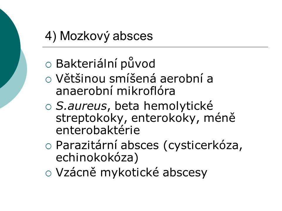 4) Mozkový absces Bakteriální původ