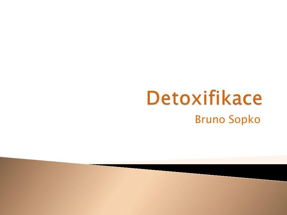 Detoxifikace Bruno Sopko