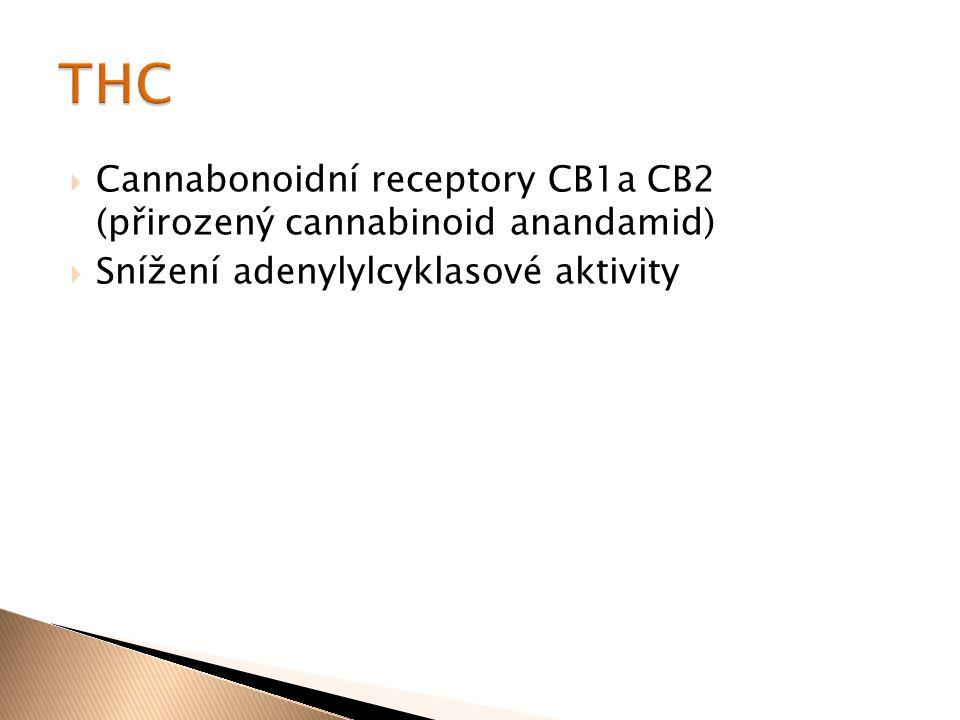 THC Cannabonoidní receptory CB1a CB2 (přirozený cannabinoid anandamid)