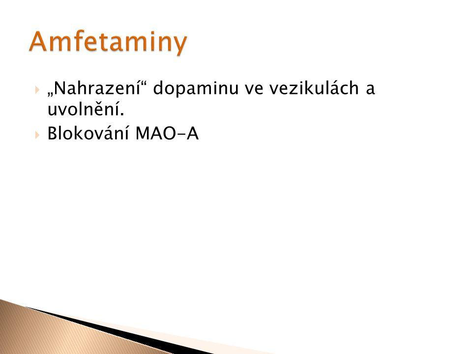 """Amfetaminy """"Nahrazení dopaminu ve vezikulách a uvolnění."""