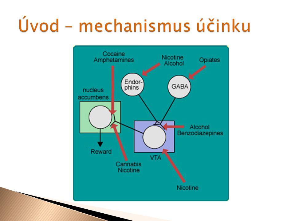 Úvod – mechanismus účinku