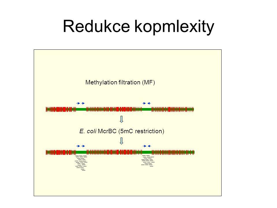 Redukce kopmlexity Methylation filtration (MF)