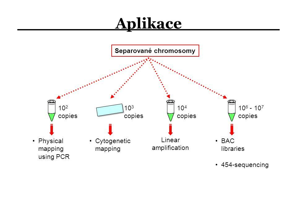 Aplikace Separované chromosomy 102 copies 104 copies 106 - 107 copies