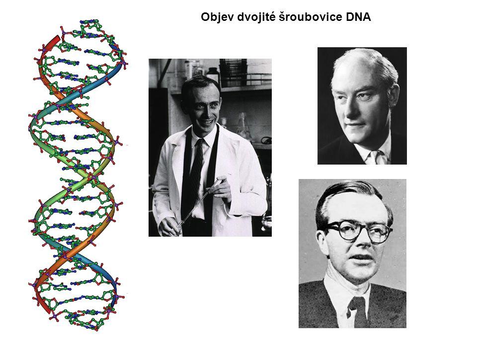 Objev dvojité šroubovice DNA
