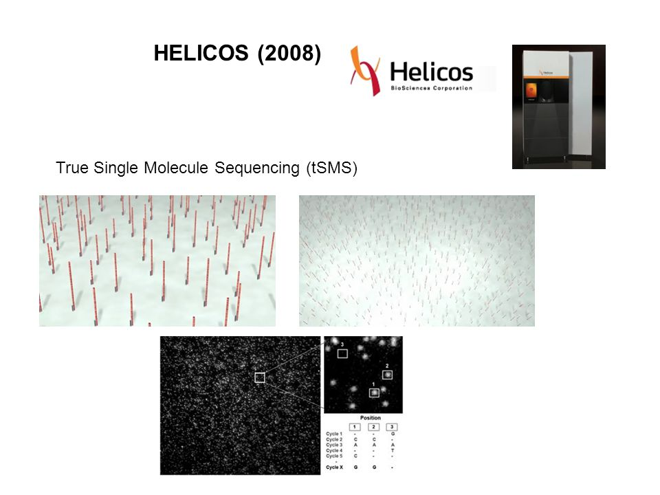 HELICOS (2008) True Single Molecule Sequencing (tSMS)