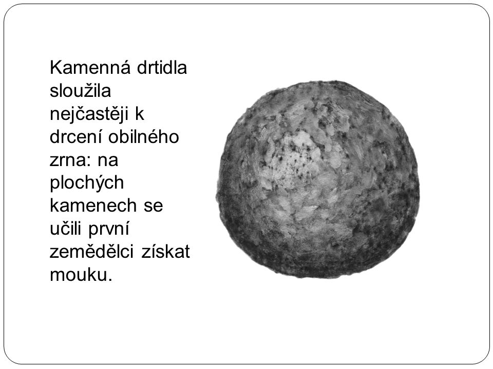 Kamenná drtidla sloužila nejčastěji k drcení obilného zrna: na plochých kamenech se učili první zemědělci získat mouku.